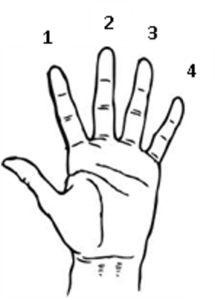 hand finger notation
