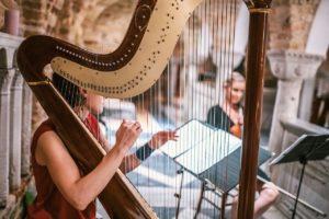 harp study module 10