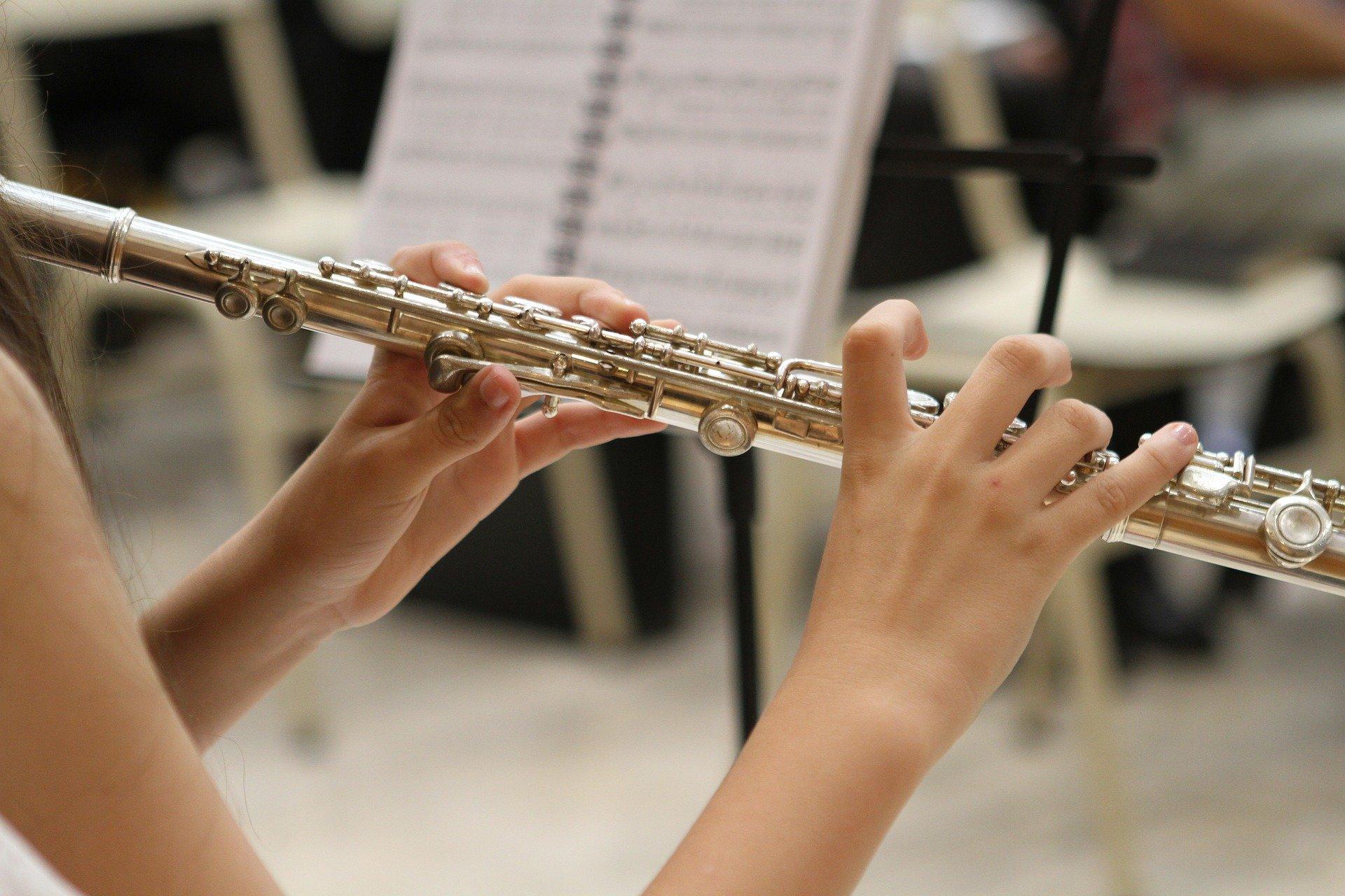 transverse flute module 9